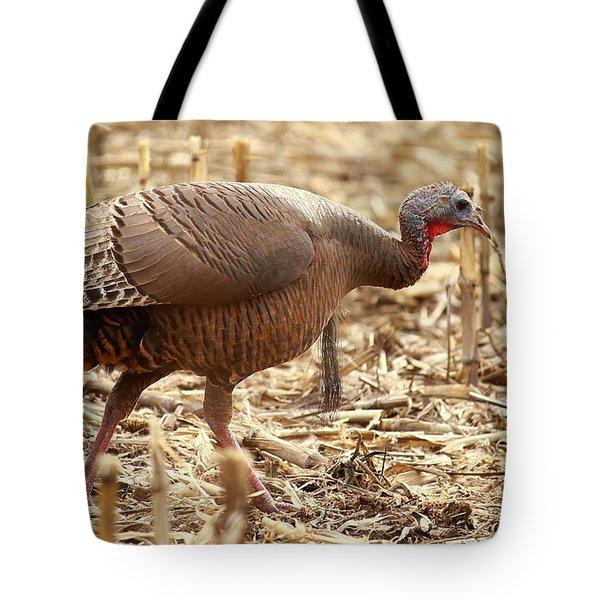 Bearded Wild Turkey Hen Tote Bag