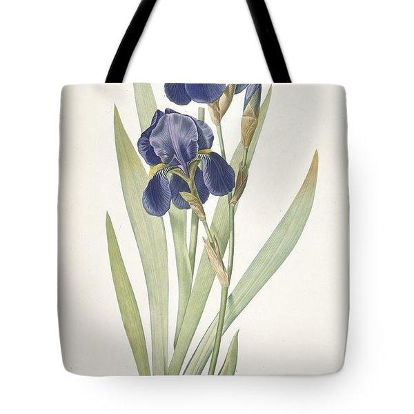 Bearded Iris Tote Bag by Pierre Joseph Redoute