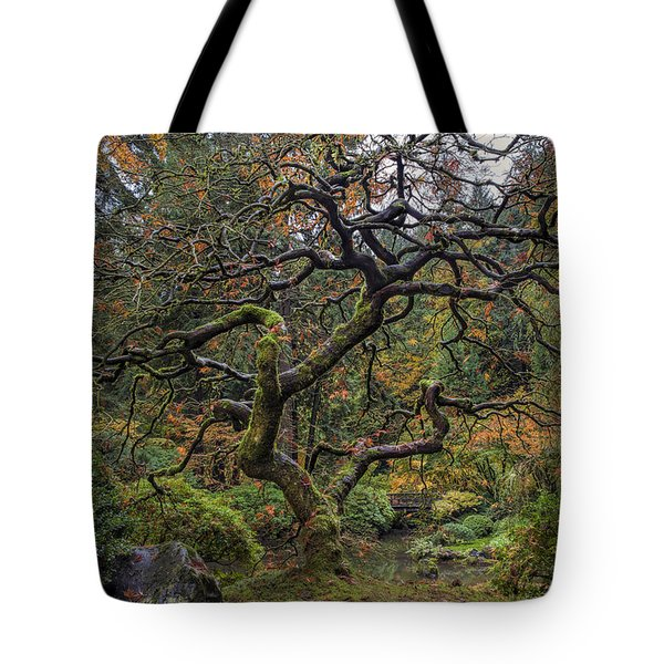 Beautiful And Bare Japanese Lace-leaf Maple Tree Tote Bag