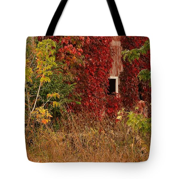 Beautiful Barn Tote Bag
