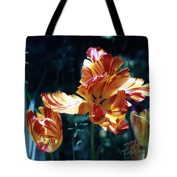 Tote Bag featuring the photograph Gorgeous Tulip by Phyllis Kaltenbach
