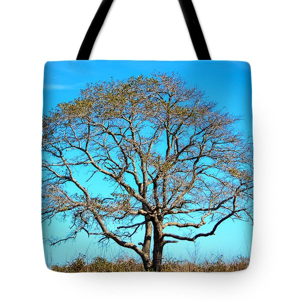 Tote Bag featuring the photograph Beautiful Branching by Debra Martz