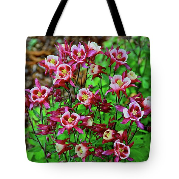 Beautiful Columbine   Tote Bag by Ed  Riche