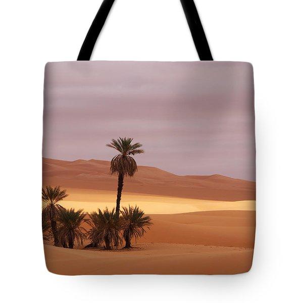 Beautiful Desert Tote Bag
