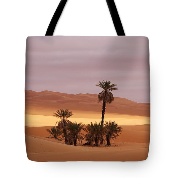 Beautiful Desert Tote Bag