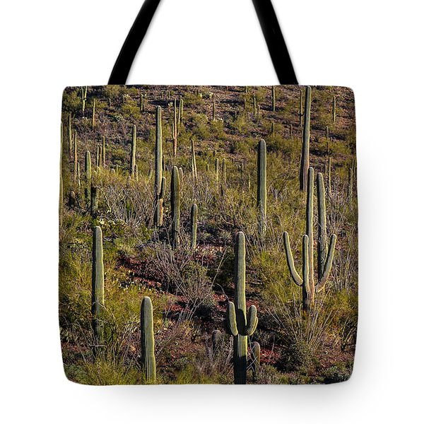 Tote Bag featuring the photograph Beautiful Desert Morning by Elaine Malott