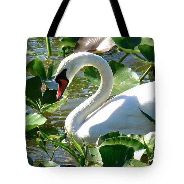 Beautiful Tote Bag by Carol  Bradley