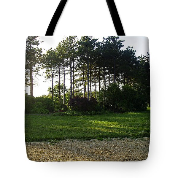 Tote Bag featuring the photograph Beautiful Earth by Verana Stark