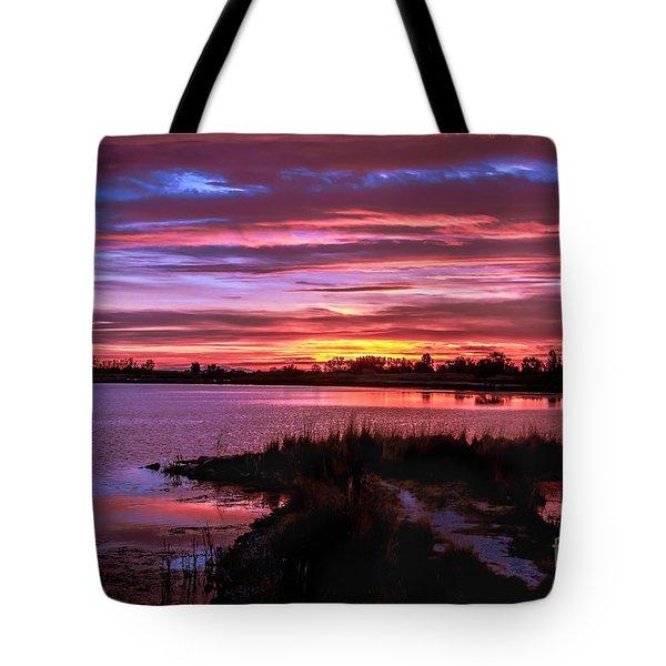Beautiful Evening Tote Bag by Robert Bales