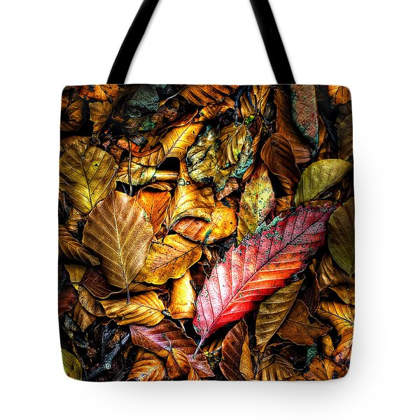 Tote Bag featuring the photograph Beautiful Fall Color by Meirion Matthias