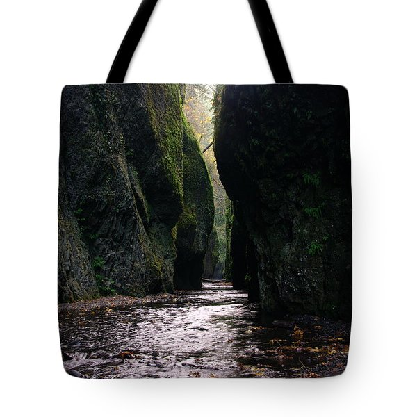 Beautiful Gorge Tote Bag