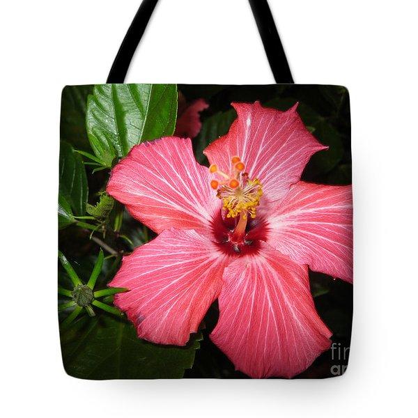 Tote Bag featuring the digital art Beautiful Hibiscus by Oksana Semenchenko
