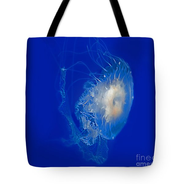 Beautiful Jelly Fish Art Prints Tote Bag