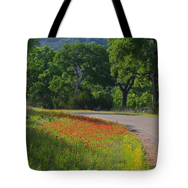 Beautiful Light On The Loop Tote Bag by Lynn Bauer
