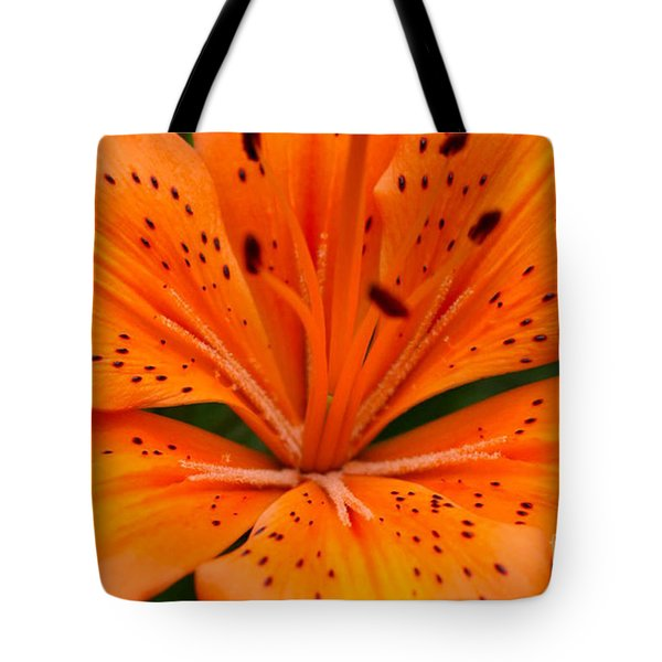 Beautiful Lily Tote Bag by Carol Lynch