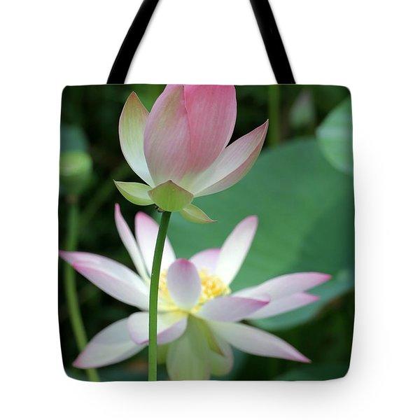 Beautiful Lotus Blooming Tote Bag