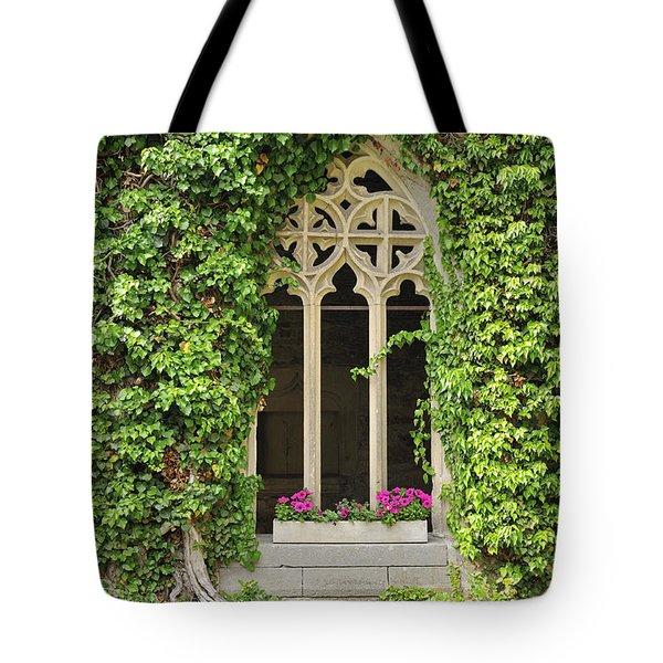 Beautiful Old Window Tote Bag