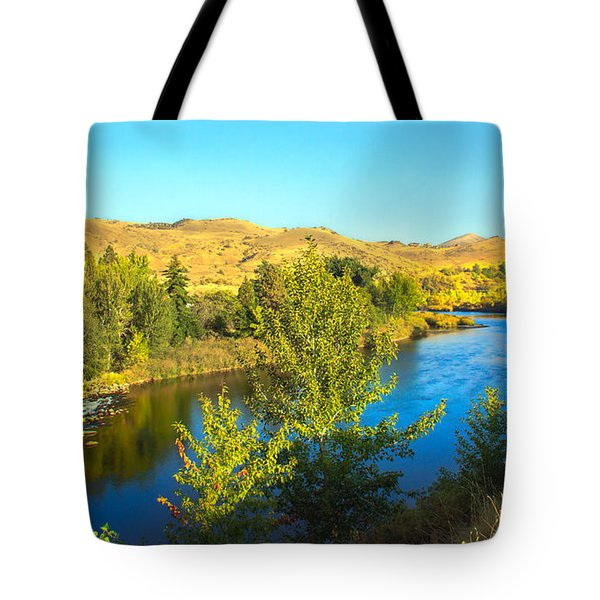 Beautiful Payette Tote Bag by Robert Bales