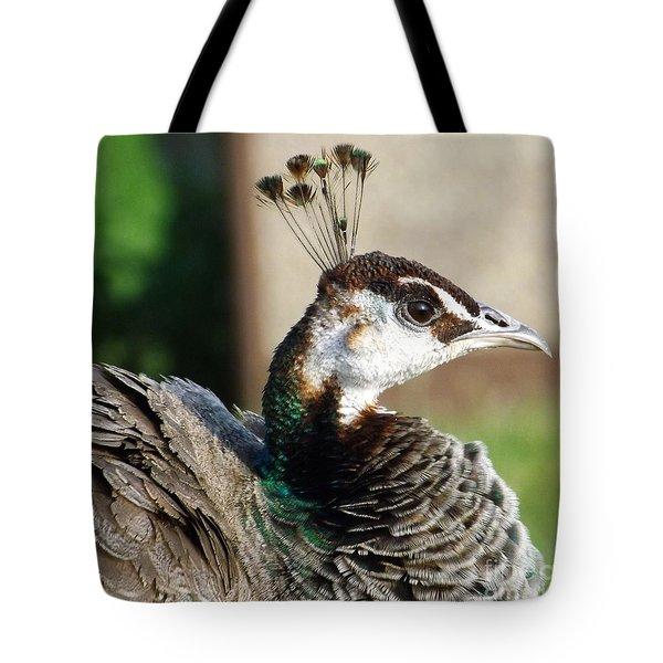 Beautiful Peahen Tote Bag