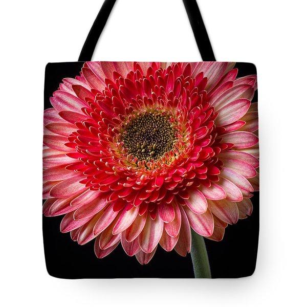 Beautiful  Pink Gerbera Tote Bag