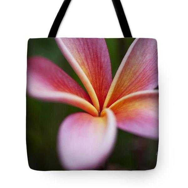 Beautiful Pink Plumeria Blossom Tote Bag