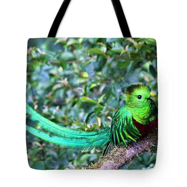 Beautiful Quetzal 3 Tote Bag by Heiko Koehrer-Wagner