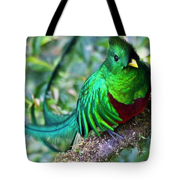 Beautiful Quetzal 4 Tote Bag
