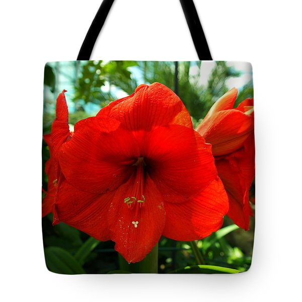 Beautiful Red Blossoms Tote Bag by Jeff Swan