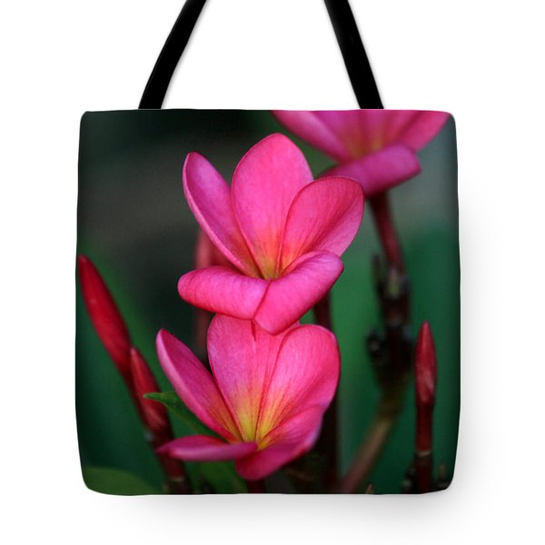 Beautiful Red Plumeria Tote Bag