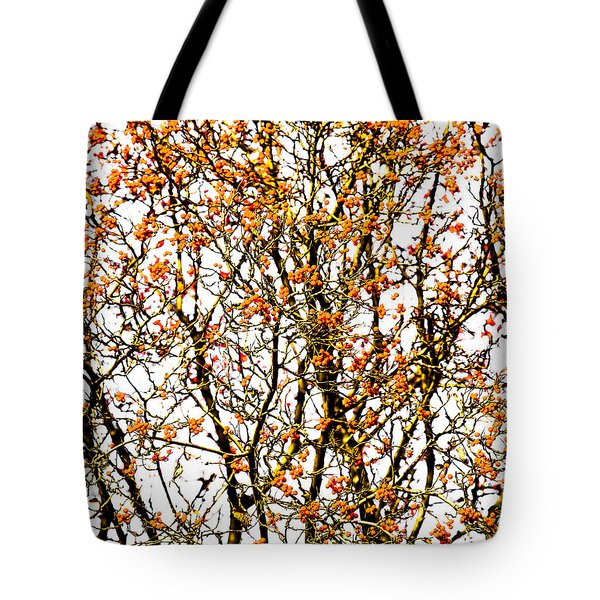 Beautiful Rowan 10 - Square Tote Bag by Alexander Senin