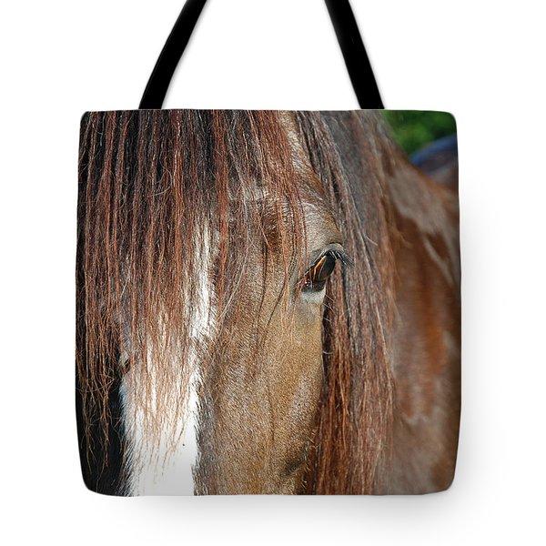 Beautiful Shire Tote Bag by Jennifer Ancker