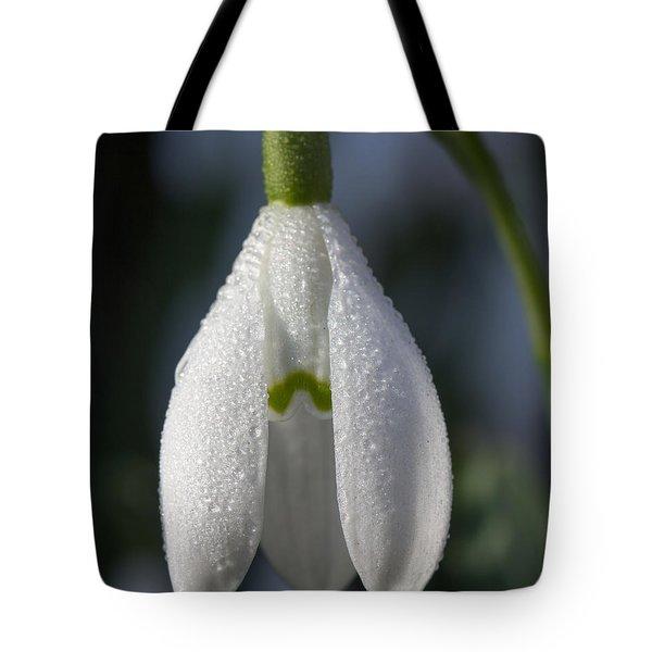Beautiful Snowdrop Tote Bag