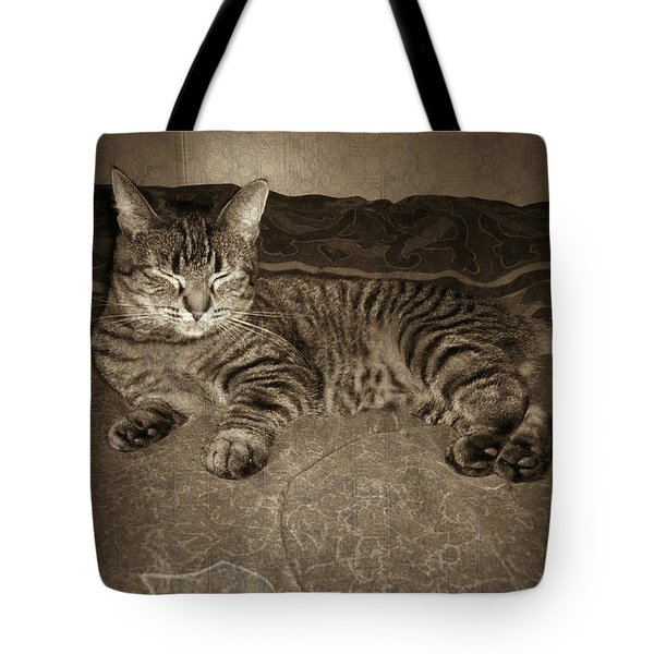 Tote Bag featuring the photograph Beautiful Tabby Cat by Absinthe Art By Michelle LeAnn Scott