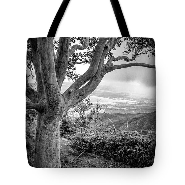 Beautiful Tree Looking Down On A Tropical Valley Tote Bag by Edward Fielding