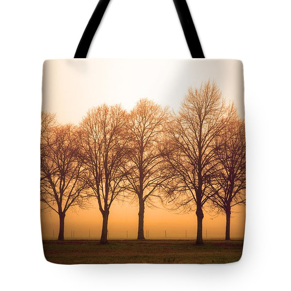 Beautiful Trees In The Fall Tote Bag by Tommytechno Sweden