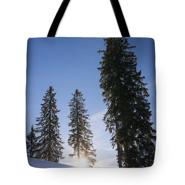 Beautiful Trees On A Sunny Winter Day Tote Bag by Matthias Hauser