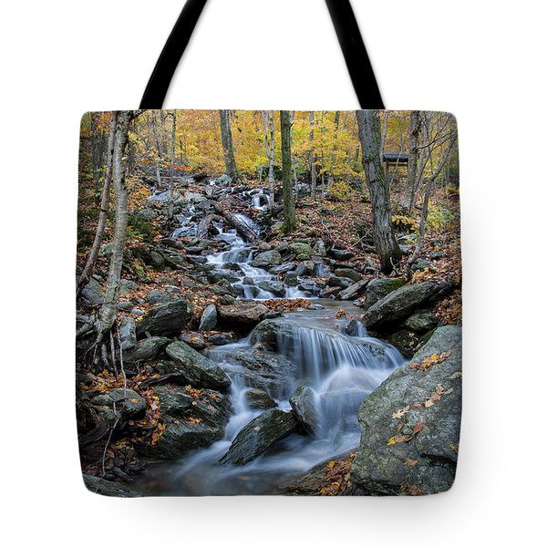 Beautiful Vermont Scenery 31 Tote Bag by Paul Cannon