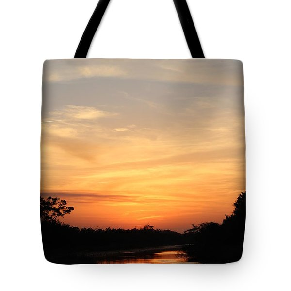 Beautiful View Tote Bag by Cynthia Guinn