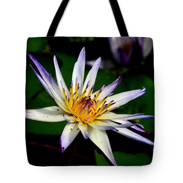 Beautiful Violet White And Yellow Water Lily Flower Tote Bag