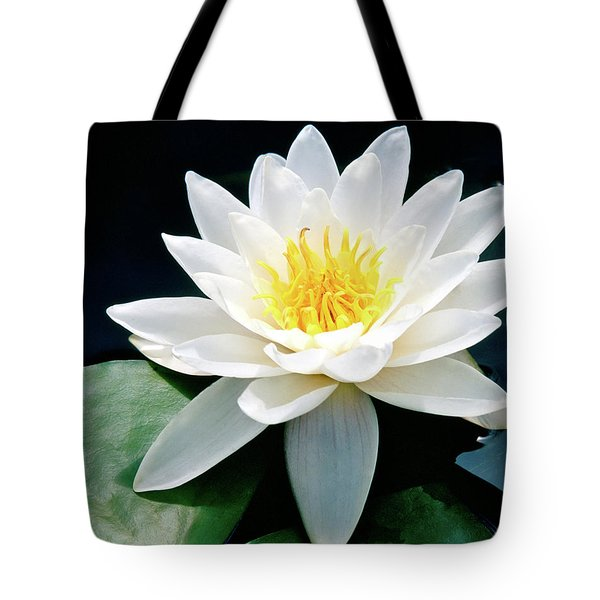 Beautiful Water Lily Capture Tote Bag by Ed  Riche