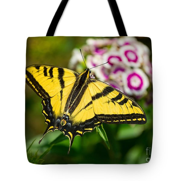 Beautiful Western Tiger Swallowtail Butterfly On Spring Flowers. Tote Bag by Jamie Pham