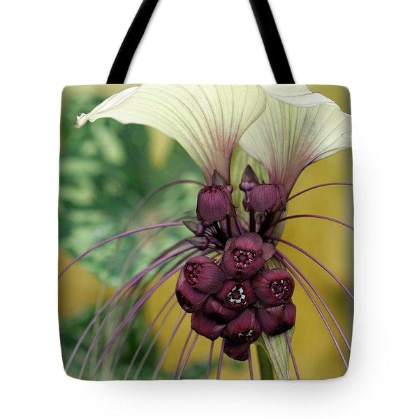 Beautiful White Bat Flower Tote Bag by Sabrina L Ryan