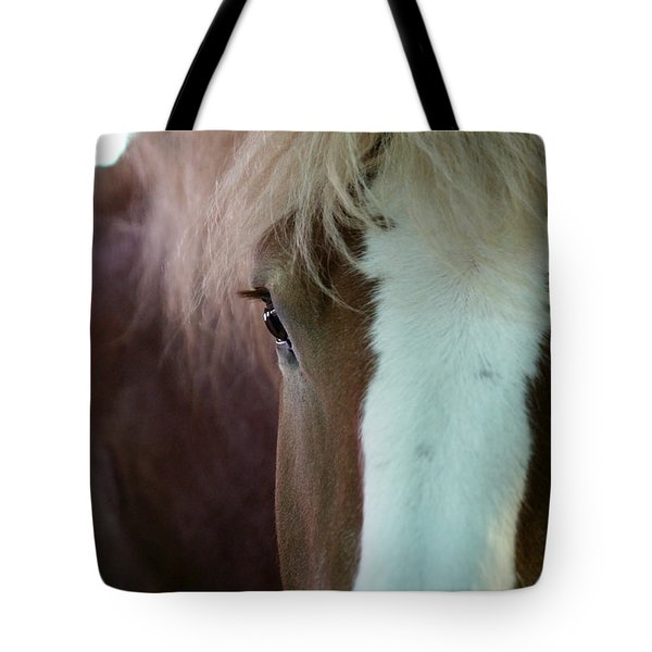 Tote Bag featuring the photograph Beautiful Within Him Was The Spirit - 1 by Linda Shafer