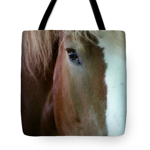 Tote Bag featuring the photograph Beautiful Within Him Was The Spirit - 2 by Linda Shafer