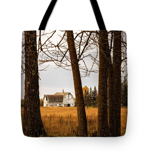 Beautifully Weathered Tote Bag