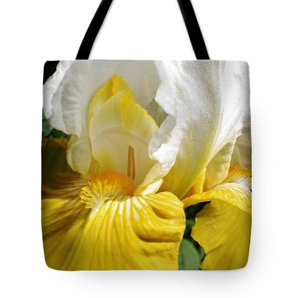 Beauty For The Eye Tote Bag by Bruce Bley