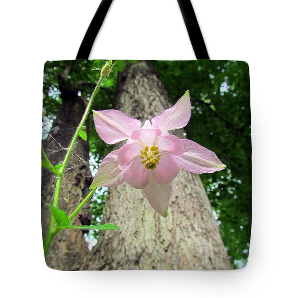 Beauty From Below Tote Bag