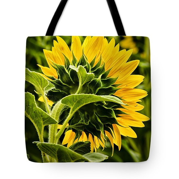 Beauty From The Back Tote Bag