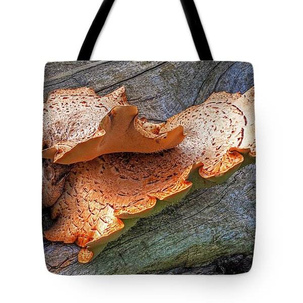 Beauty In Decay - Tree Fungus Tote Bag