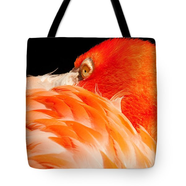 Beauty In Feathers Tote Bag